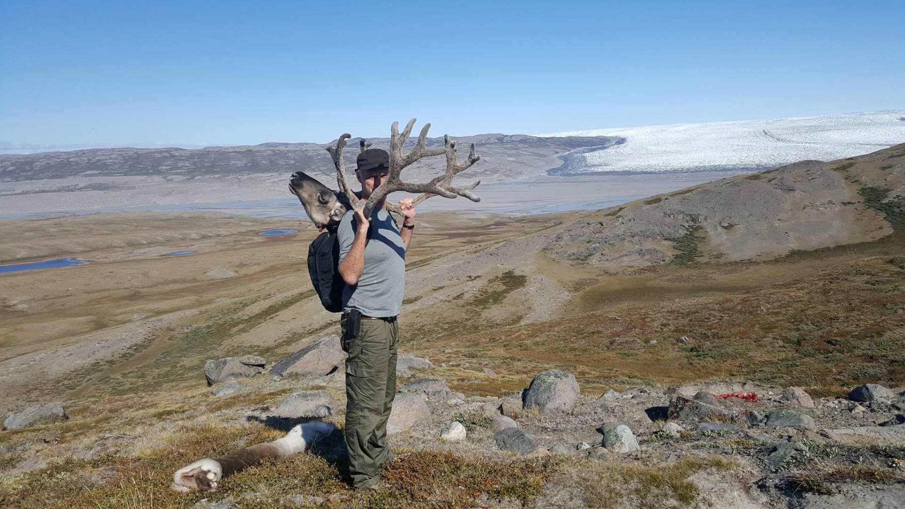 carrying-out-caribou
